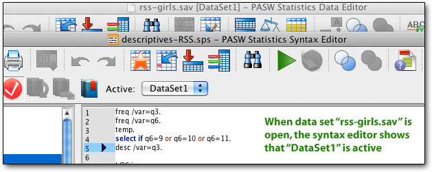 multiple datasets in PASW 18